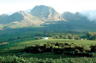 ステレンボシュ(Stellenbosch)地区