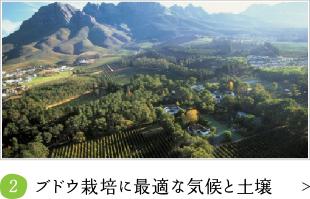 ブドウ栽培に最適な気候と土壌